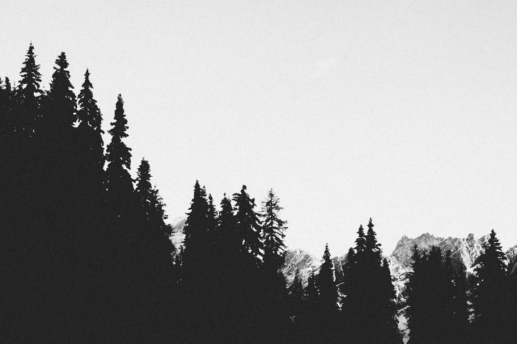 lichtbilder_04_07