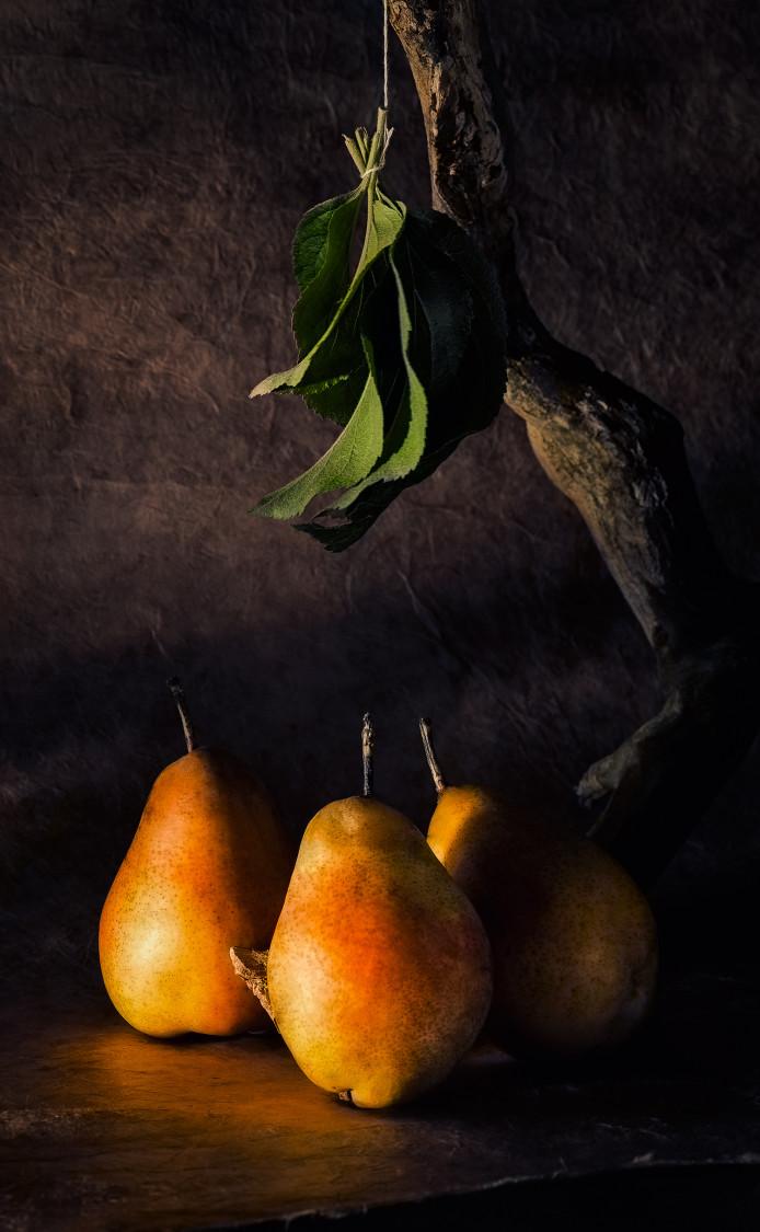 pears_01